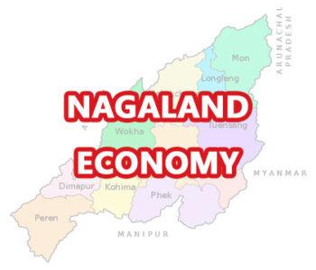 nagaland gk mcq quiz-economy